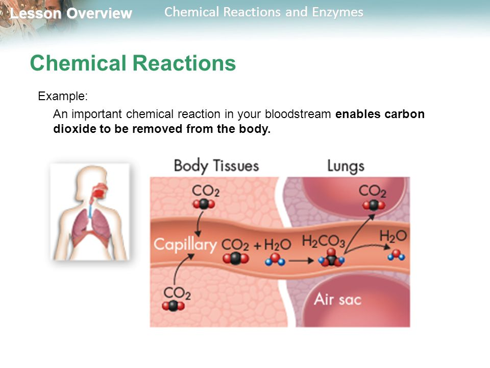 Chemical Reactions Example: