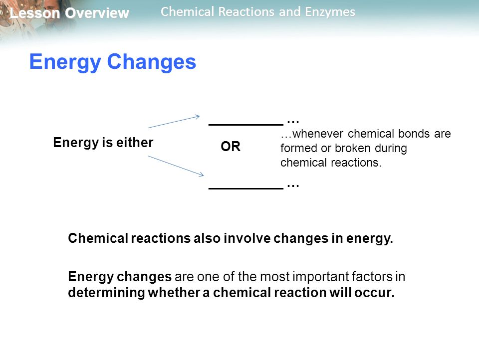 Energy Changes Energy is either __________ … OR
