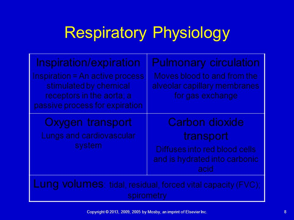 activity 8 respiratory volumes Name: ashlei sickles exercise 7: respiratory system mechanics: activity 1: measuring respiratory volumes and calculating capacities lab report.
