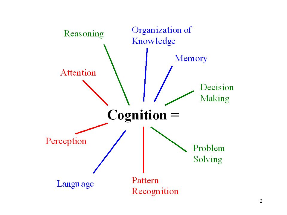 Image result for cognition