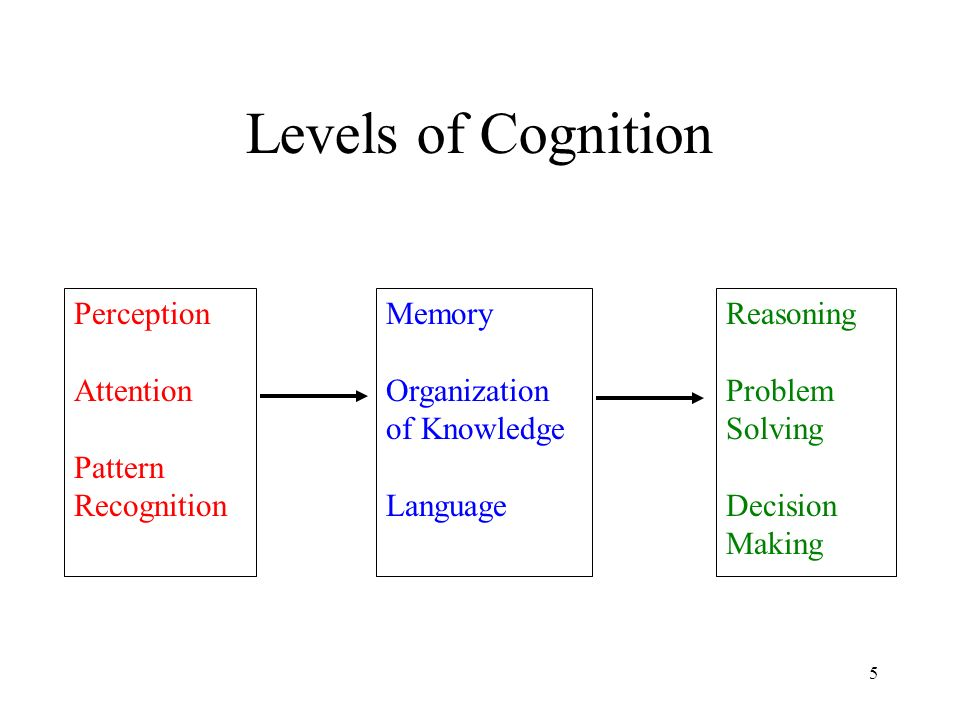 Cognition Study of how the mind works. Study of basic