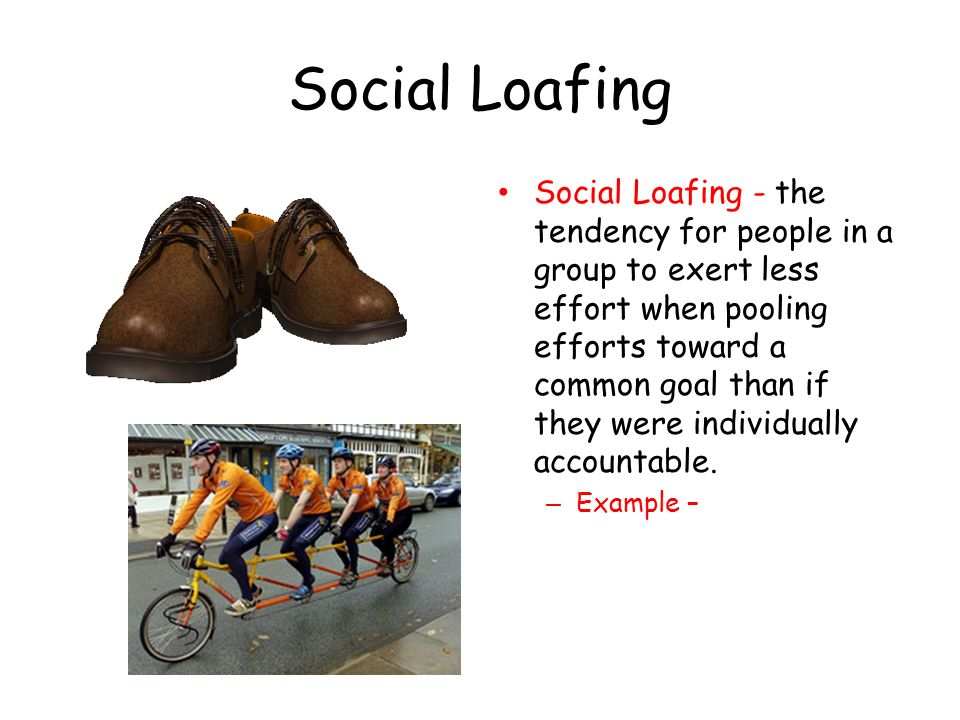 social loafing Social loafing describes the tendency of individuals to put forth less effort when they are part of a group because all members of the group are.