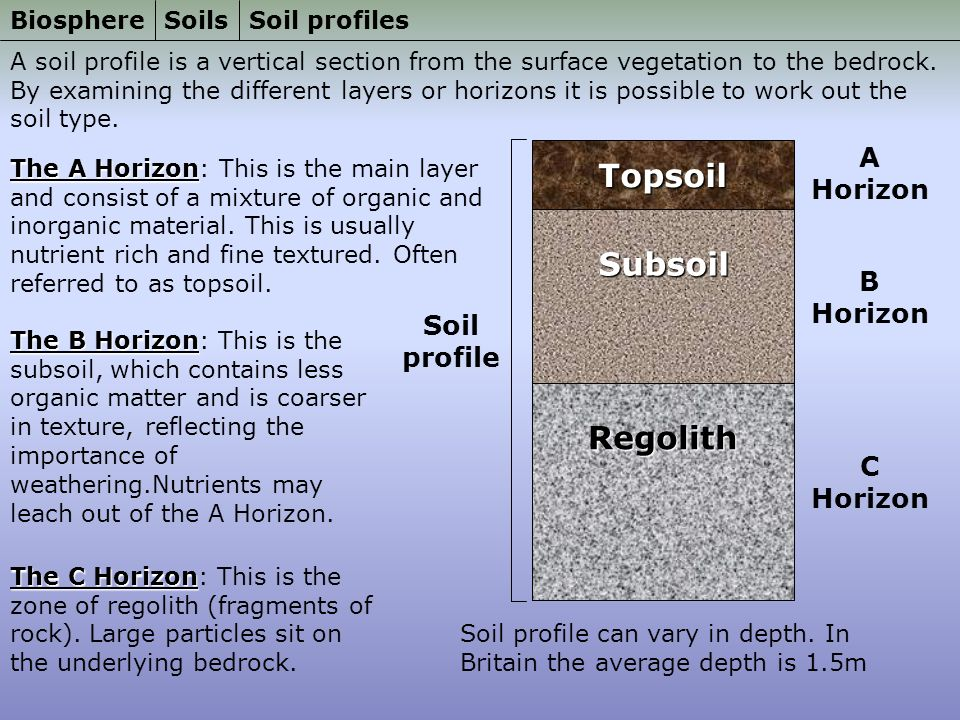 Biosphere soils soils properties and formation processes for What is soil made out of