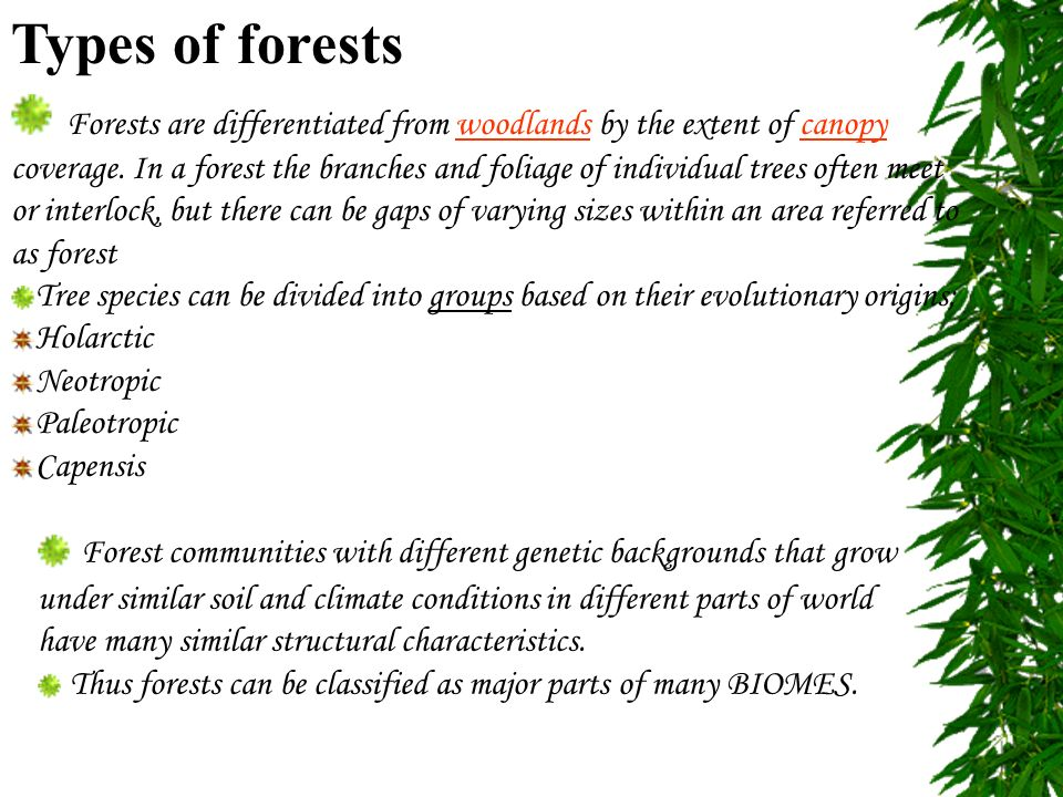 Introduction a forest is an area with a high density of for Different types of soil and their characteristics