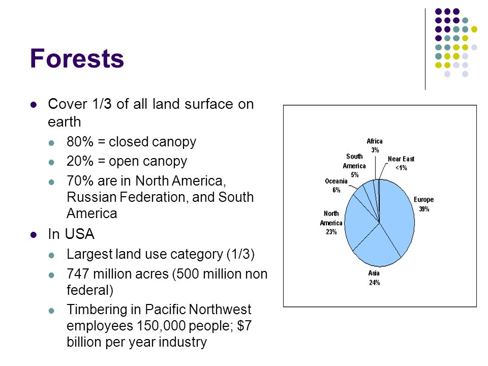 Forests Cover 1/3 of all land surface on earth In USA  sc 1 st  SlidePlayer & Forestry. - ppt video online download
