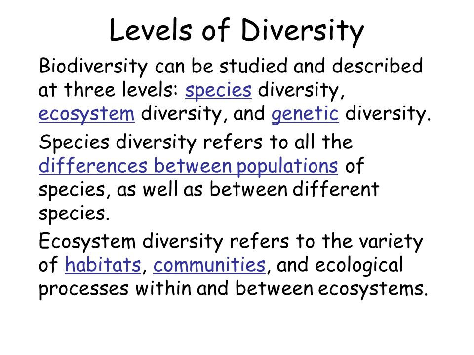 species diversity and ecosystem stability This shifts attention away from diversity-stability relationships toward the multiple factors, including diversity, that dictate the stability of ecosystems understanding the relationship between diversity and stability requires a knowledge of how species interact with each other and how each is affected by the environment.