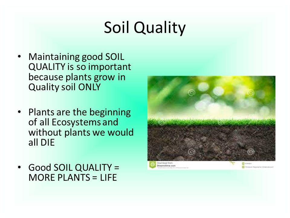 Earth systems structures ppt download for Soil quality