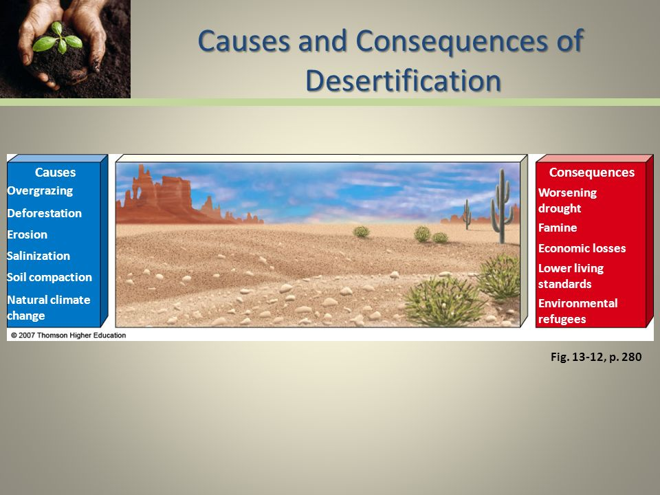causes of desertification The two main causes of desertification climatic variations: climate change,  drought, moisture loss on a global level human activities: these include  overgrazing.