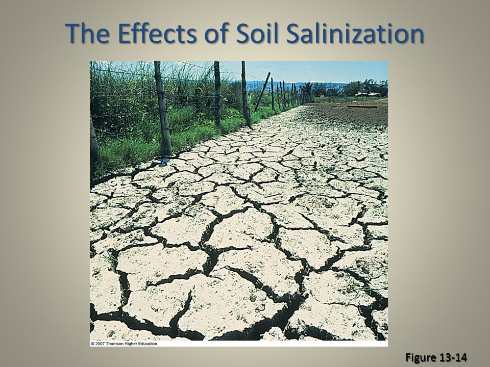 Soil a renewable resource ppt download for Meaning of soil resources