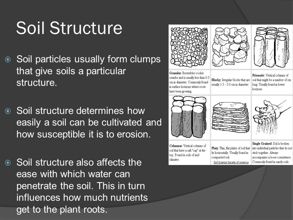 Earth science 5 2 soil soil ppt video online download for Give the scientific word for soil
