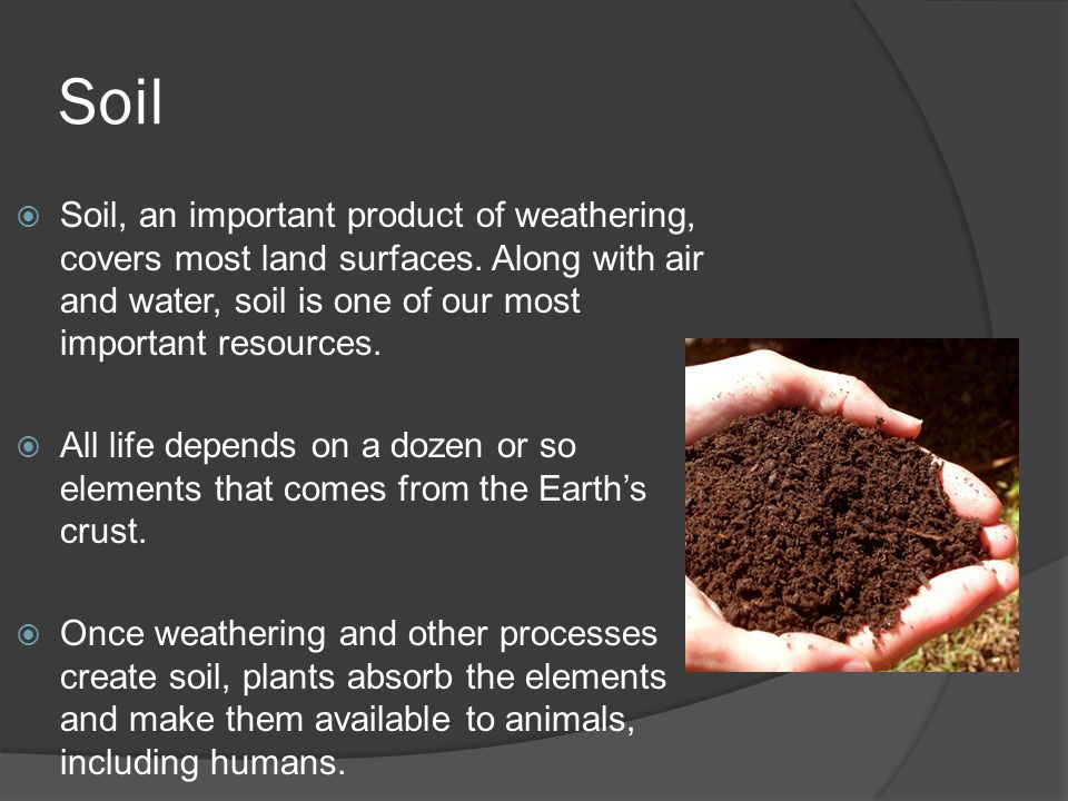 Earth science 5 2 soil soil ppt video online download for Importance of soil minerals