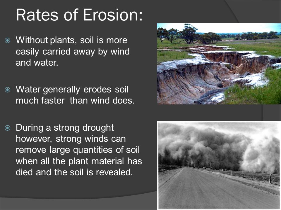 water erosion rates Water erosion comes in several different forms with various causes no matter the differences, we humans can have a large impact on our water quality and erosion rates.