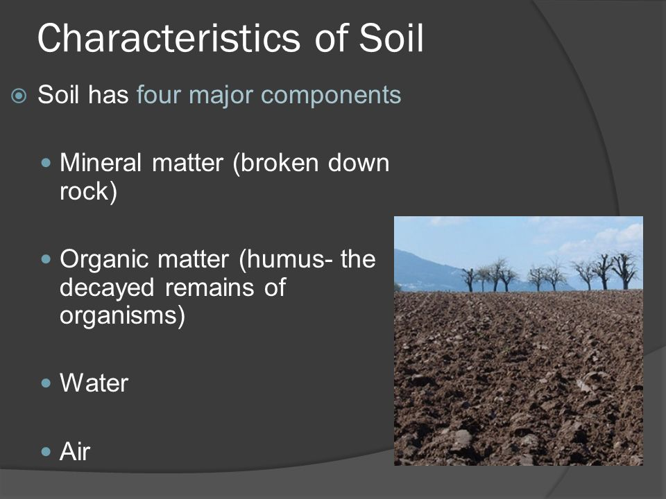 Earth science 5 2 soil soil ppt video online download for Characteristics of soil