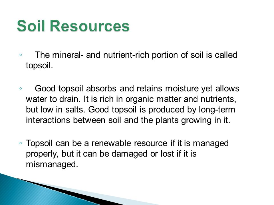 Lesson overview 6 1 a changing landscape ppt video for What is rich soil called
