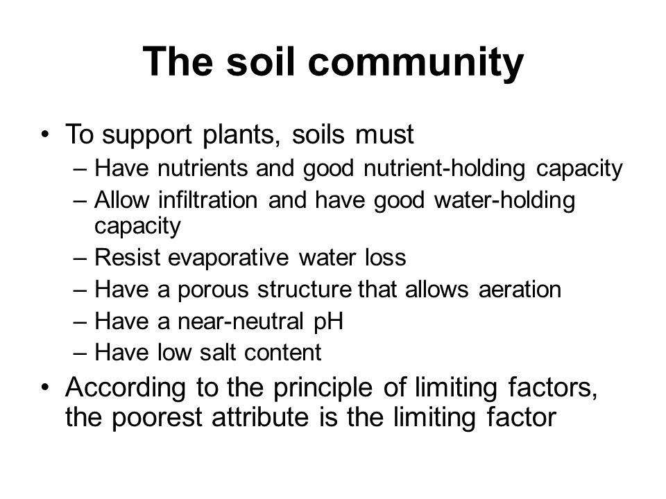 Chapter 11 soil ppt video online download for Soil support