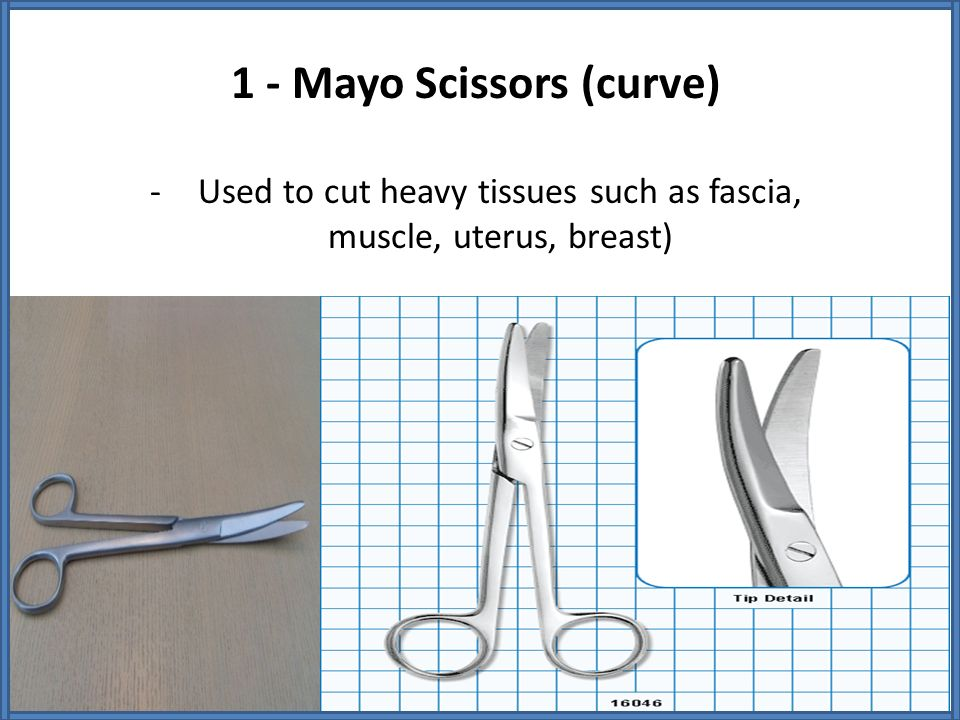 1 - Mayo Scissors (curve)