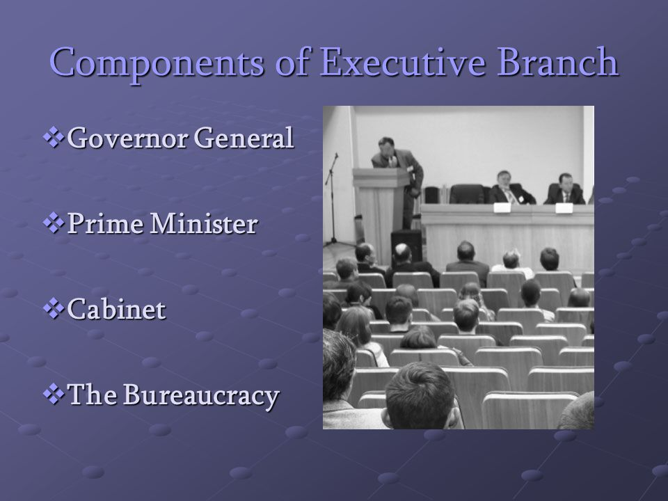 components of a bureaucracy Question description detail the components of state bureaucracy and the issues  surrounding representativeness and responsiveness your response should be.