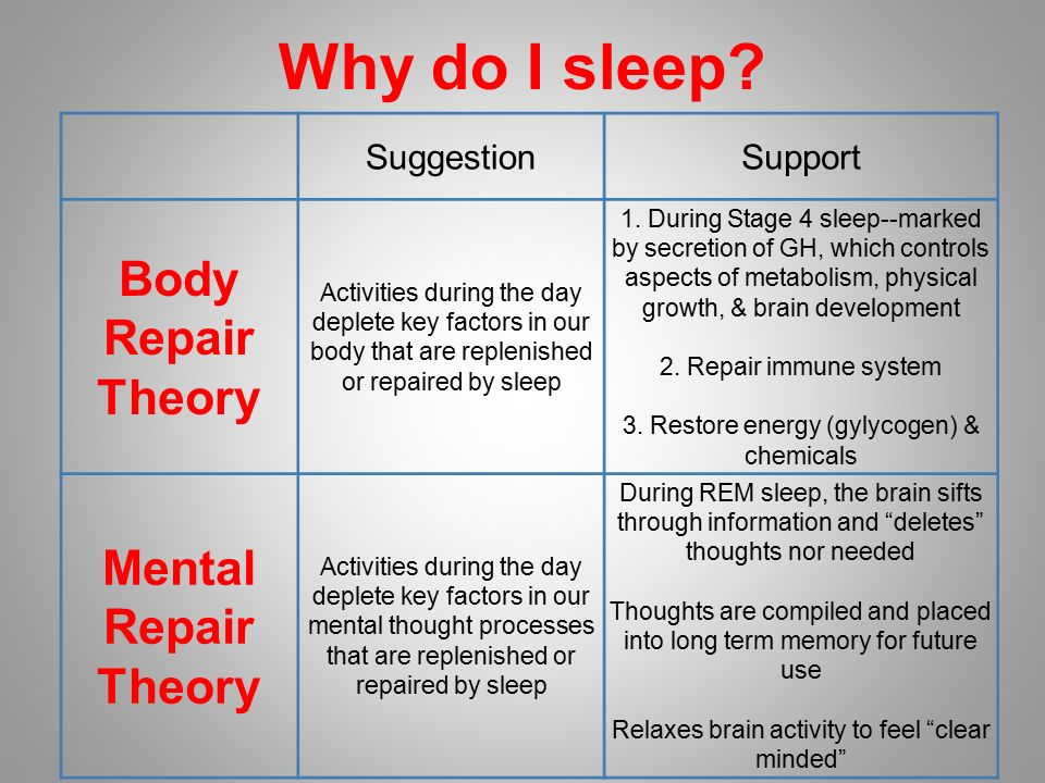 theories of why humans sleep What is the real reason we sleep it is surprisingly hard to pin down why we snooze, partly because sleep does so many good things that we can't tell which is the crucial one share on facebook.