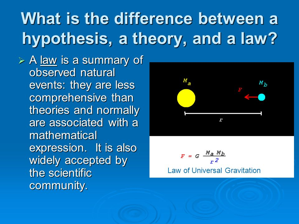 What is the difference between hypothesis, thesis