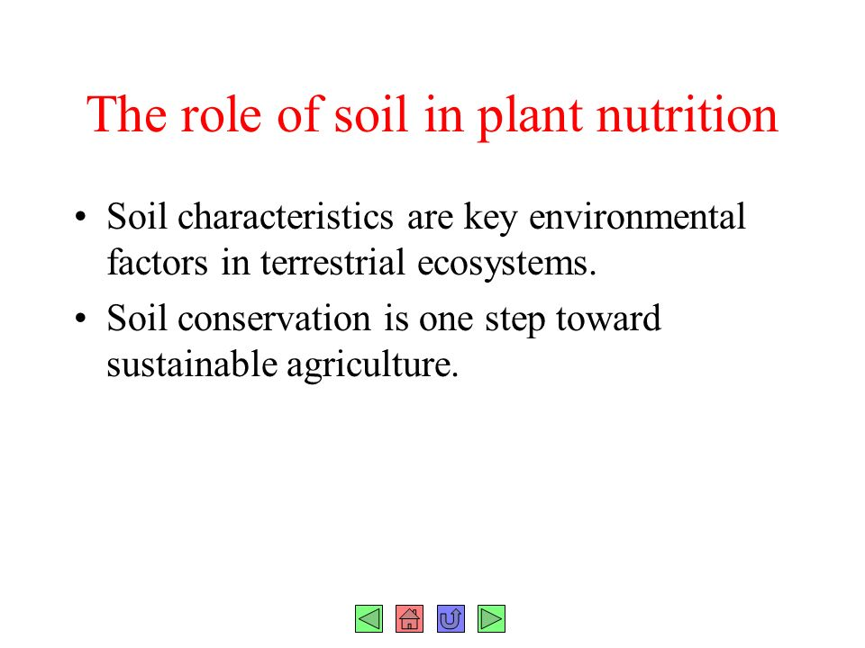 Chapter 37 plant nutrition fig ppt download for What are soil characteristics