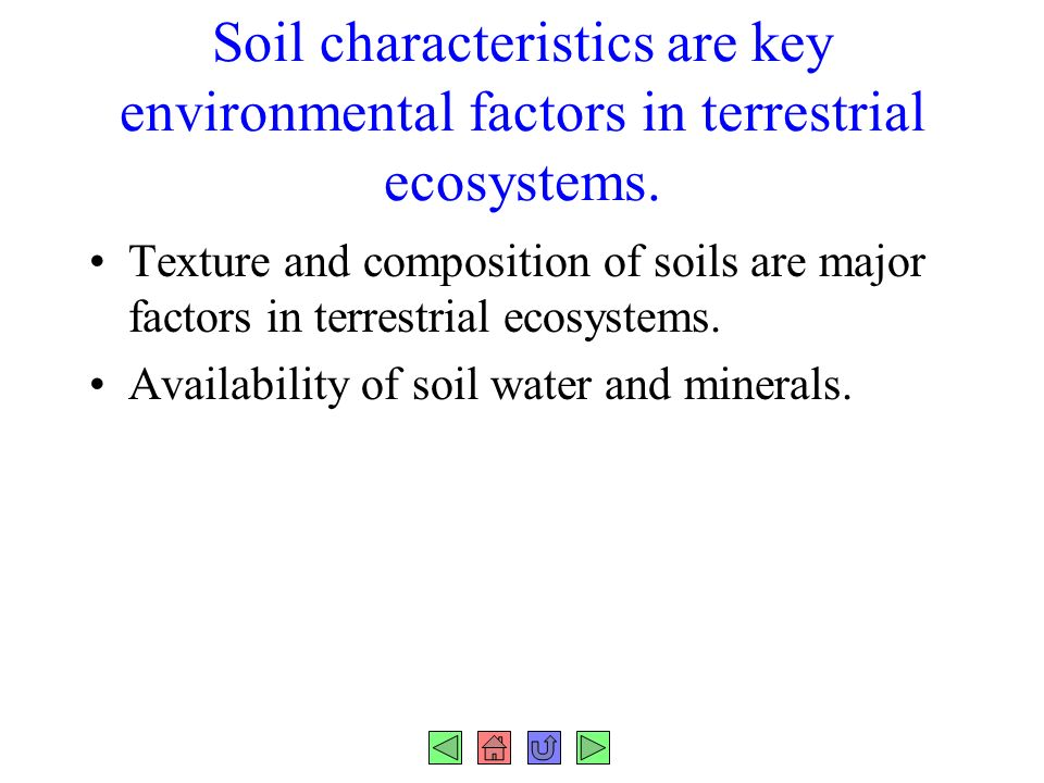 Chapter 37 plant nutrition fig ppt download for Mineral constituents of soil