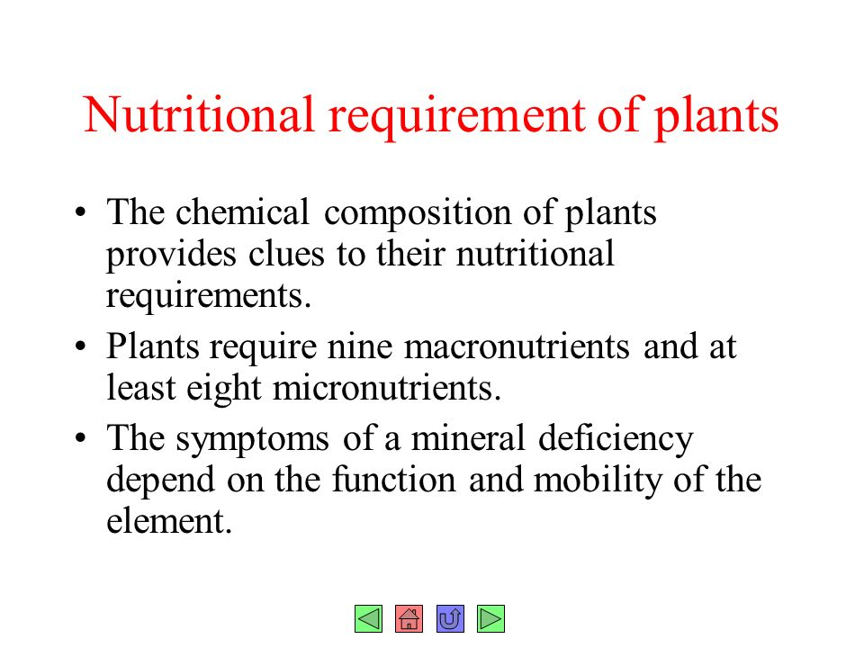Plant Chemical Components : Chapter plant nutrition fig ppt download