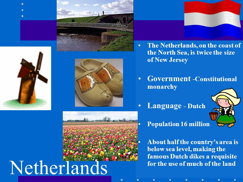 constitutional monarchies and the netherlands A government in which a monarch shares power with other branches of government is called a _____monarchy constitutional the governments of norway, sweden, and the netherlands are all examples of.