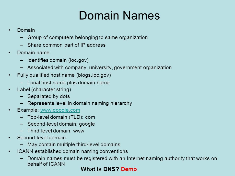 Domain Names What is DNS Demo Domain
