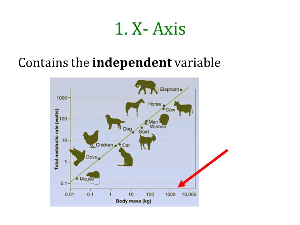 1. X- Axis Contains the independent variable