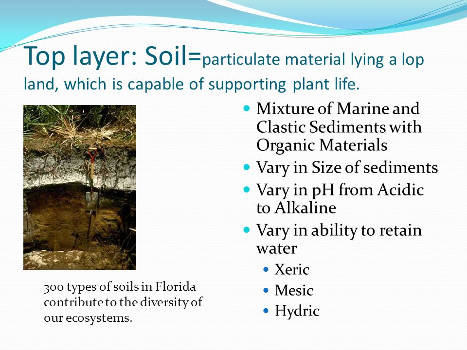 The physical materials of florida week of january 12 ppt for Top layer of soil