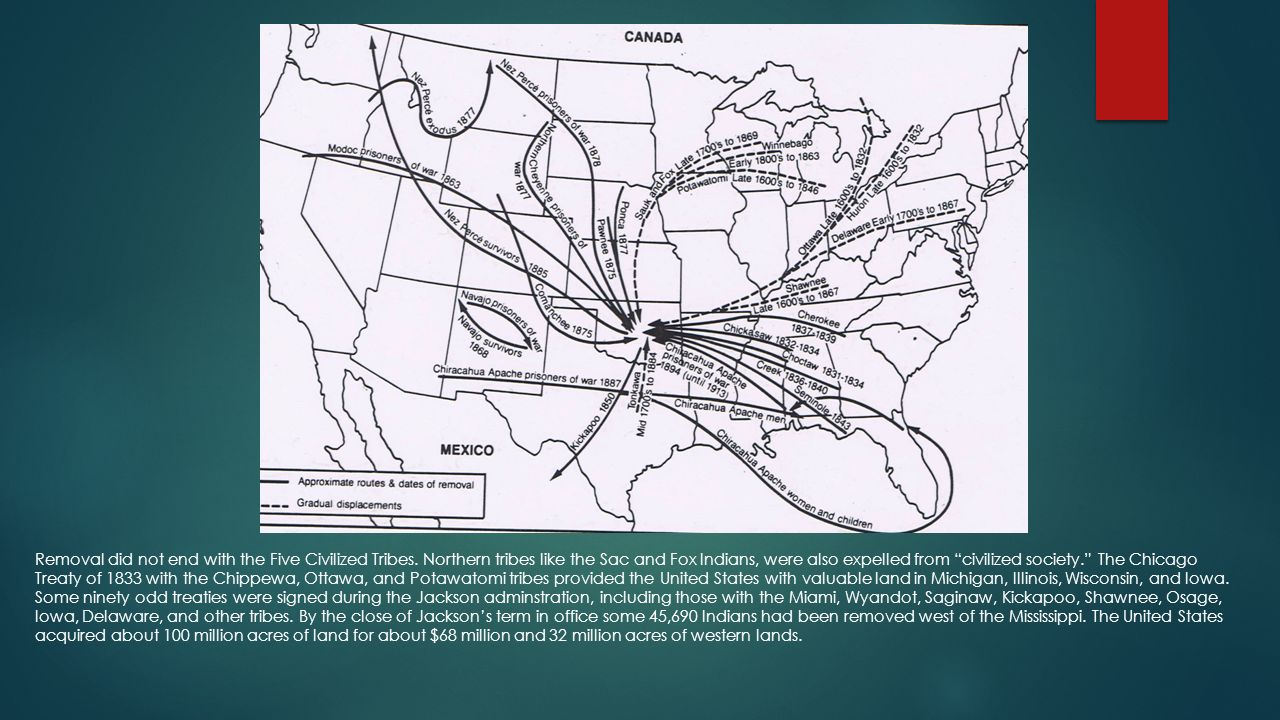 Indian Removal ppt download