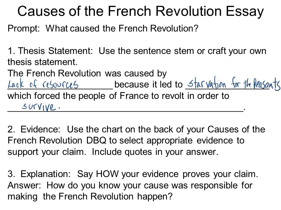 French Revolution Essays (Examples)