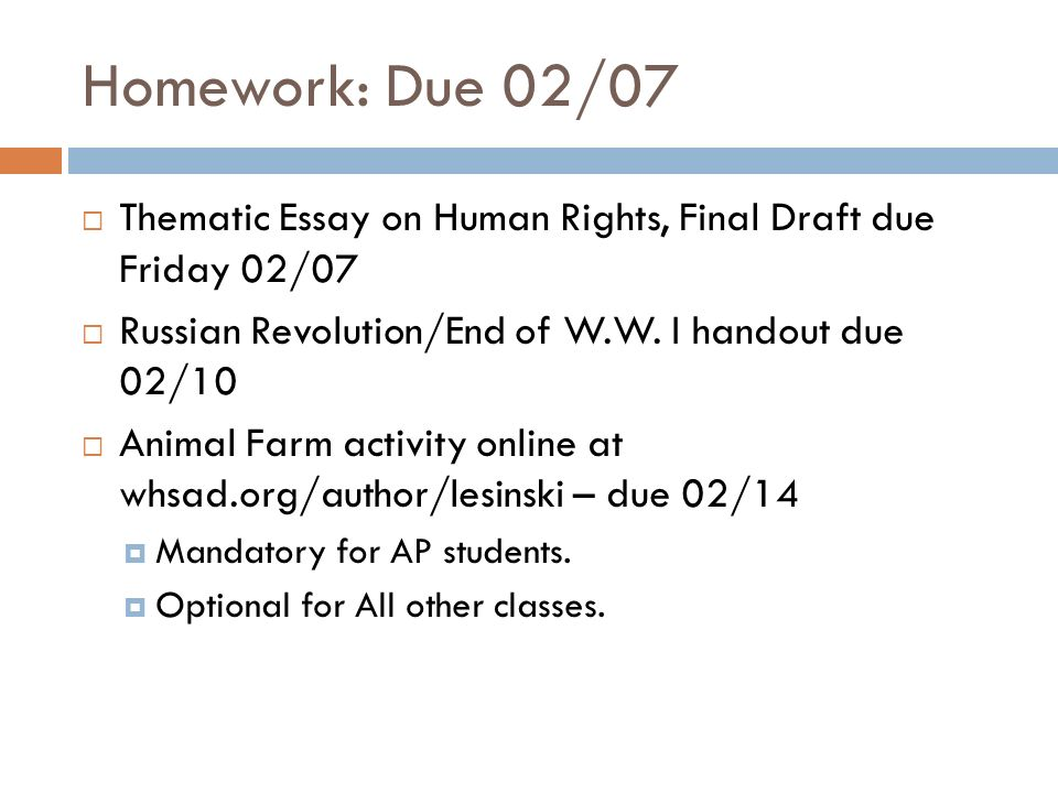 animal rights final research paper