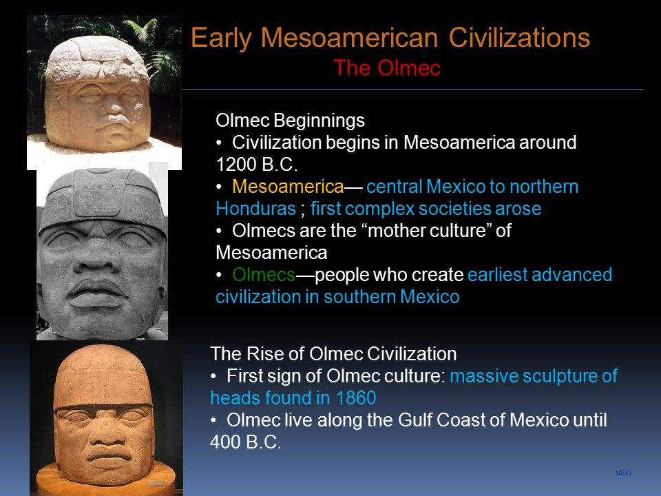 mesoamerica and complex societies essay Essay questionsdocx  environment of mesoamerica and andean region played a significant role in developing complex societies.