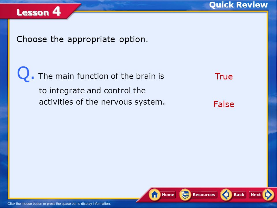 Quick Review Choose the appropriate option. Q. The main function of the brain is to integrate and control the activities of the nervous system.