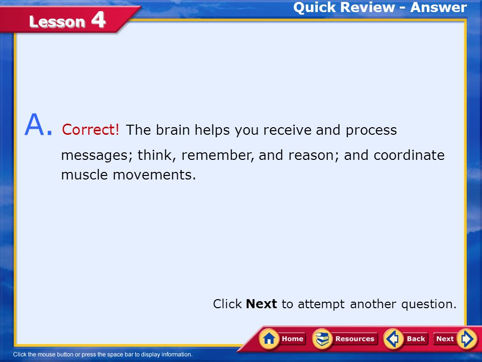 Quick Review - Answer A. Correct! The brain helps you receive and process messages; think, remember, and reason; and coordinate muscle movements.