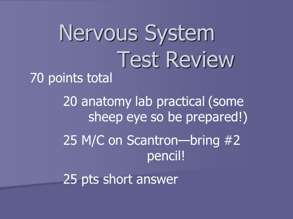 Nervous System Test Review 70 points total - ppt video online download