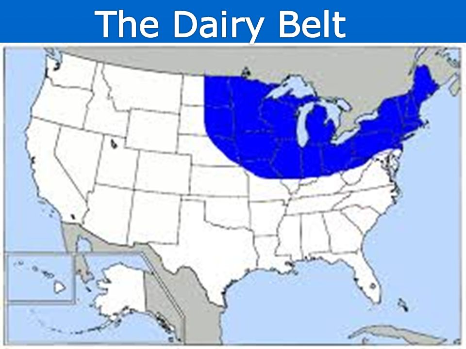 Bell Ringer Take Out US And Canada Blank Map Ppt Video Online - Where are the dairyon the us map