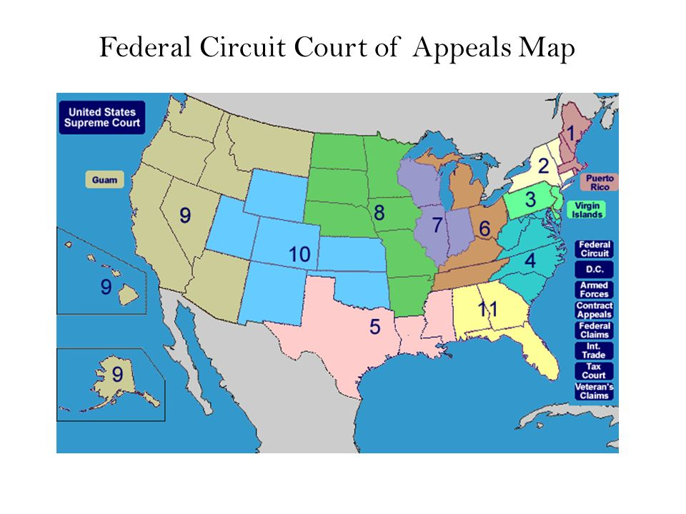 Federal Court Concepts Federal Courts Of Appeal Federal Courts