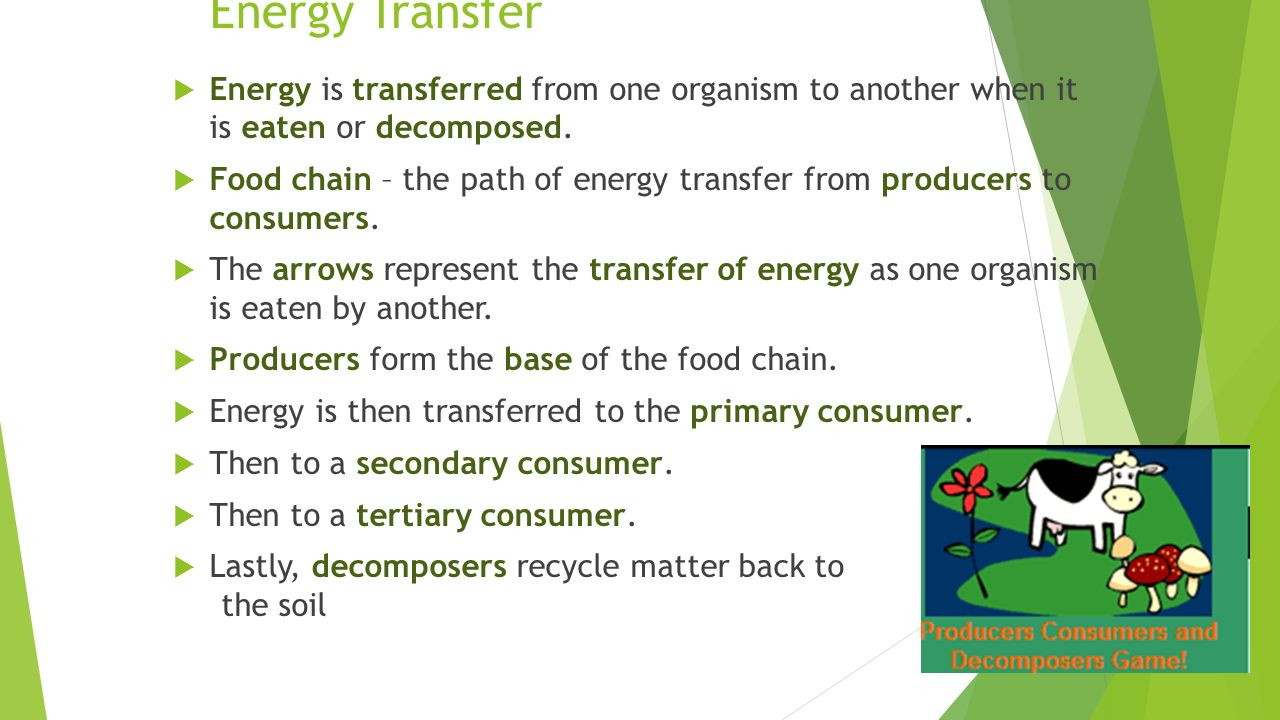 energy transfers Energy transfer showing top 8 worksheets in the category - energy transfer some of the worksheets displayed are grade six energy lesson energy transfer transformation, energy transformation object, energytransformations energycanchangefromonetypeto, primary energy infobook activities, kmbt 754 20150622022119, chemistry energy work answer key, heat transfer work, work methods of heat transfer.