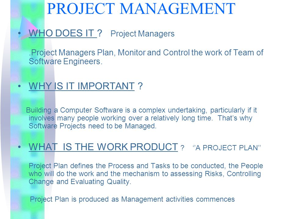 who is software project manager