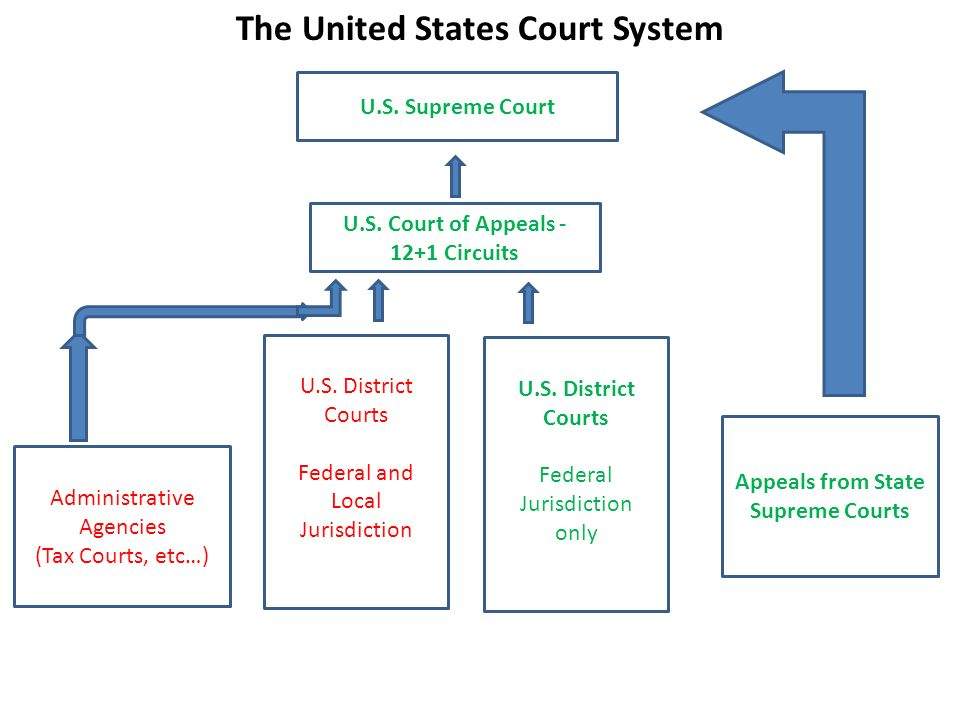 united states court system Videos from the federal judiciary, connecting you with the united states courts in fresh ways that we hope will inform, motivate and inspire as the third br.