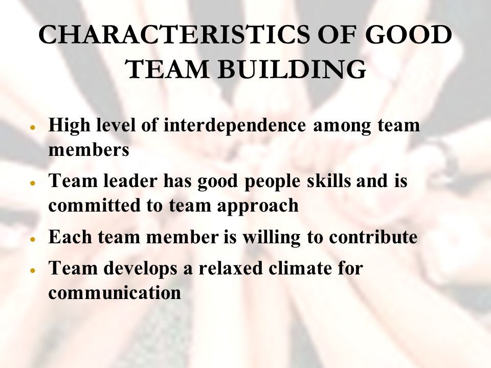 characteristics of a team leader