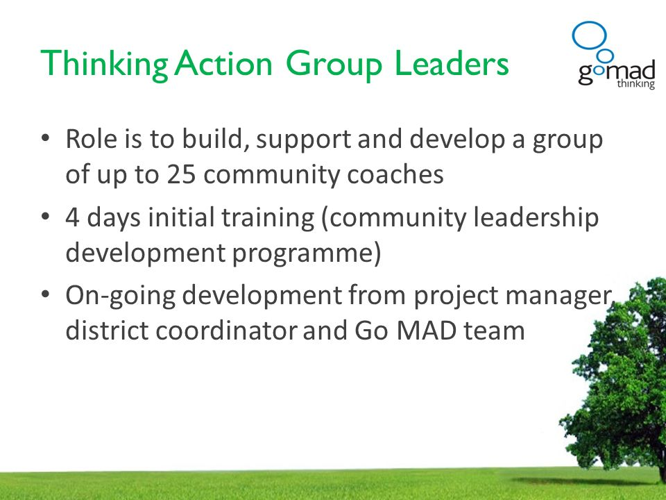Thinking Action Group Leaders