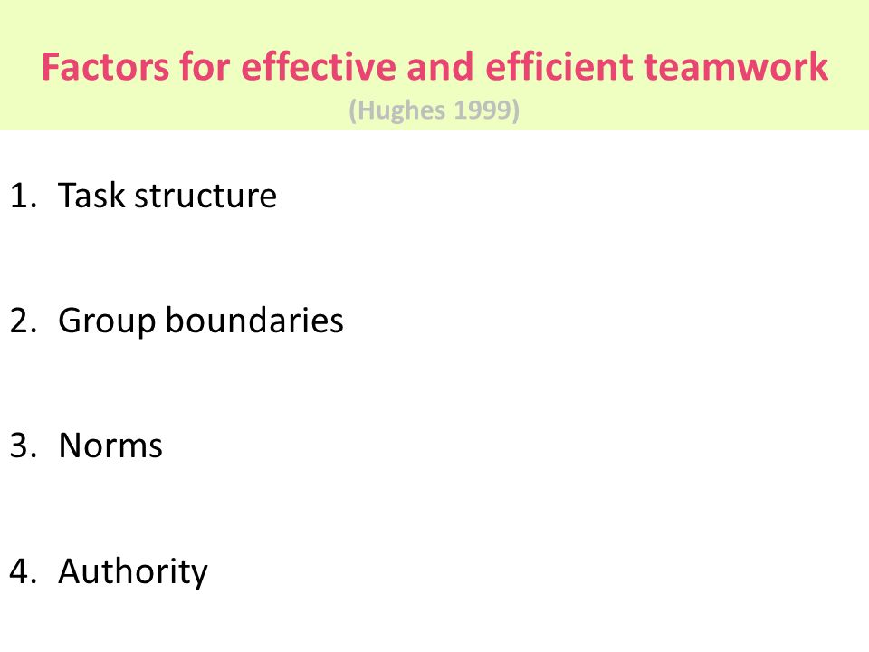 Factors for effective and efficient teamwork (Hughes 1999)