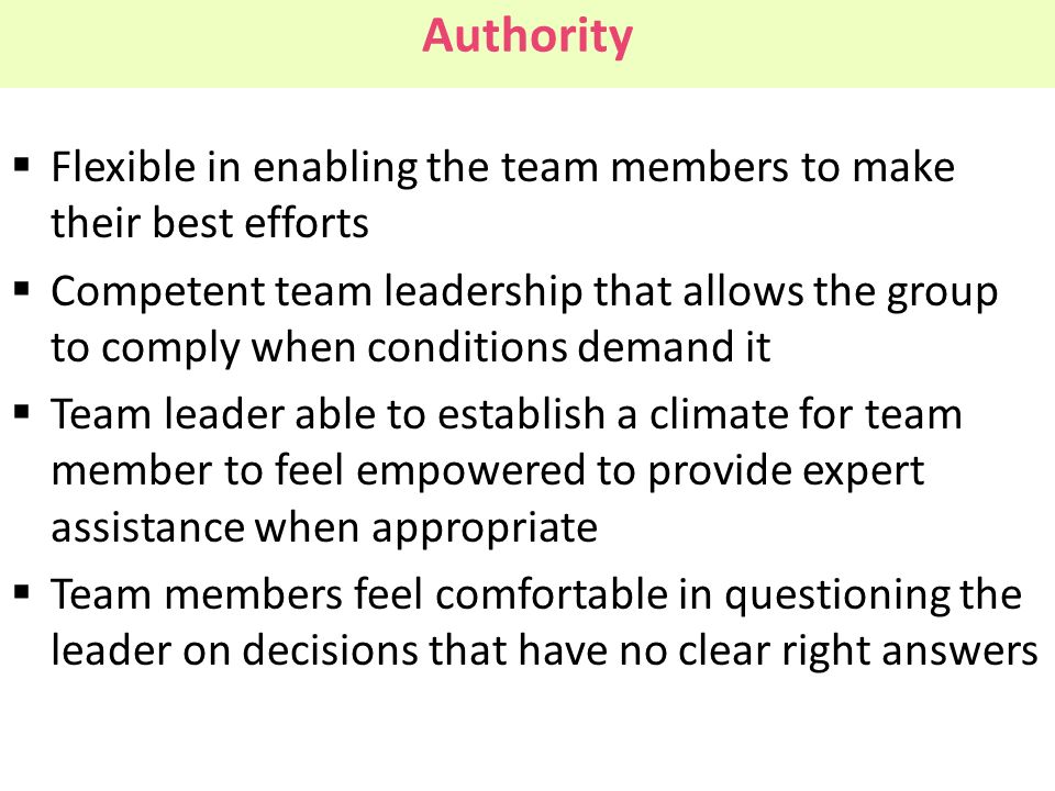 Authority Flexible in enabling the team members to make their best efforts.