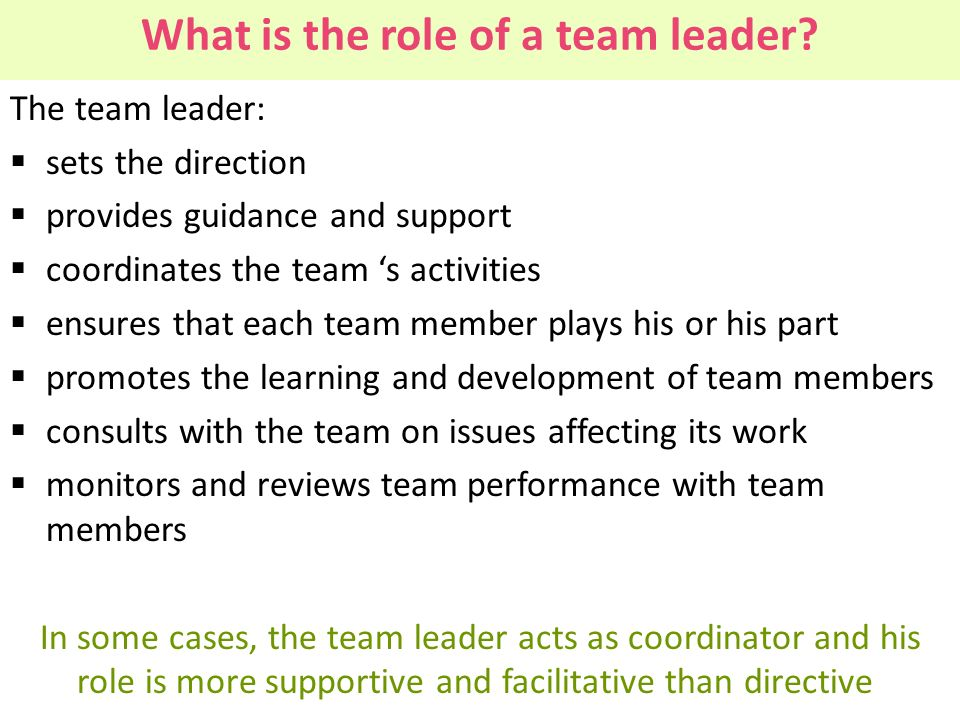 What is the role of a team leader