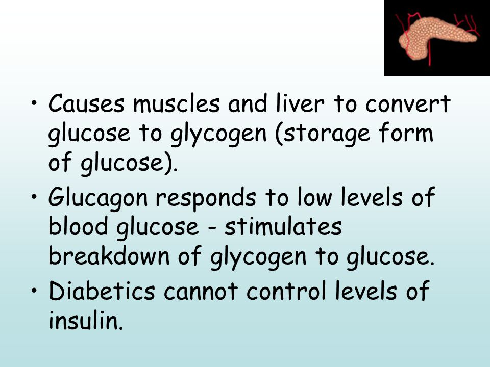 Storage Form Of Glucose - perplexcitysentinel.com