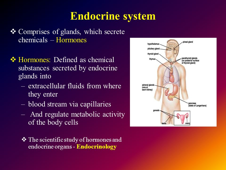 What is Endocrine system and its secreting Hormones
