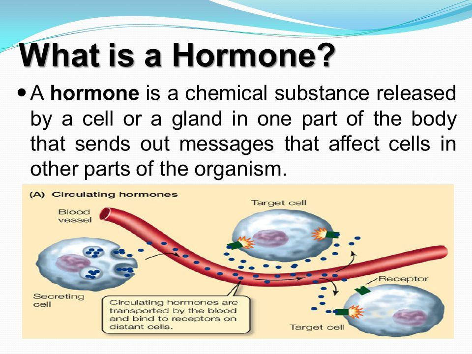 hormones by: dr. hassan el-banna. - ppt video online download, Human Body
